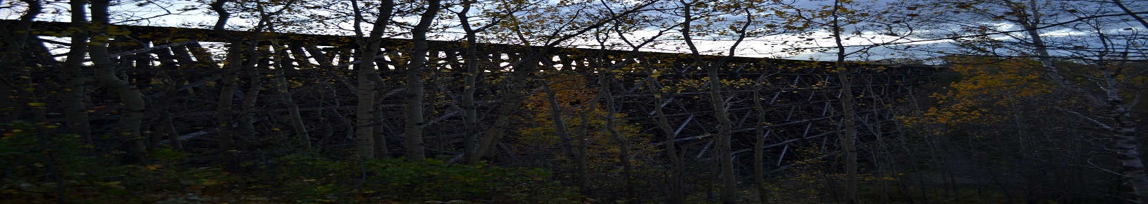 Old Wood Bridge Banner